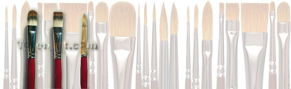 Toray brushes long handle