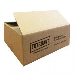 Totenart-Caja Cartón Impresa Totenart 200x140x140 mm