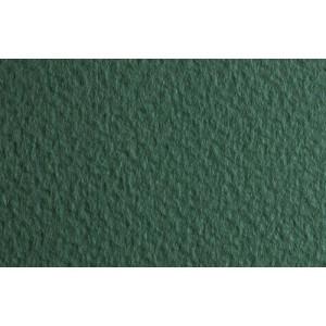 totenart-papel-fabriano-tiziano-pintura-pastel-50x65-color_13_salvia