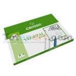 Basik Vegetal, (minipack) 12 sheets, 95gr 21x29.7cm (A4)