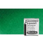 Watercolour Schmincke Akademie, Permanent Green 553, 1/2 Godet.