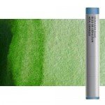 Watercolor stick Permanent Sap Green Winsor & Newton