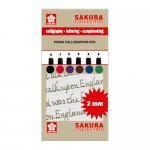 Set 6 markers Pigma Calligrapher Pen 2mm Sakura